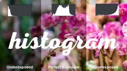 How to use a Histogram in photography