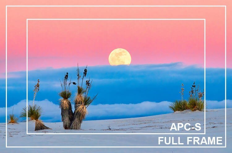 Full frame vs APC-S