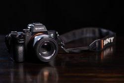 are mirrorless cameras worth it